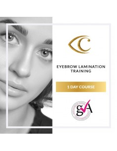 Eyebrow Lamination Training